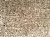 Carpet Leaka_